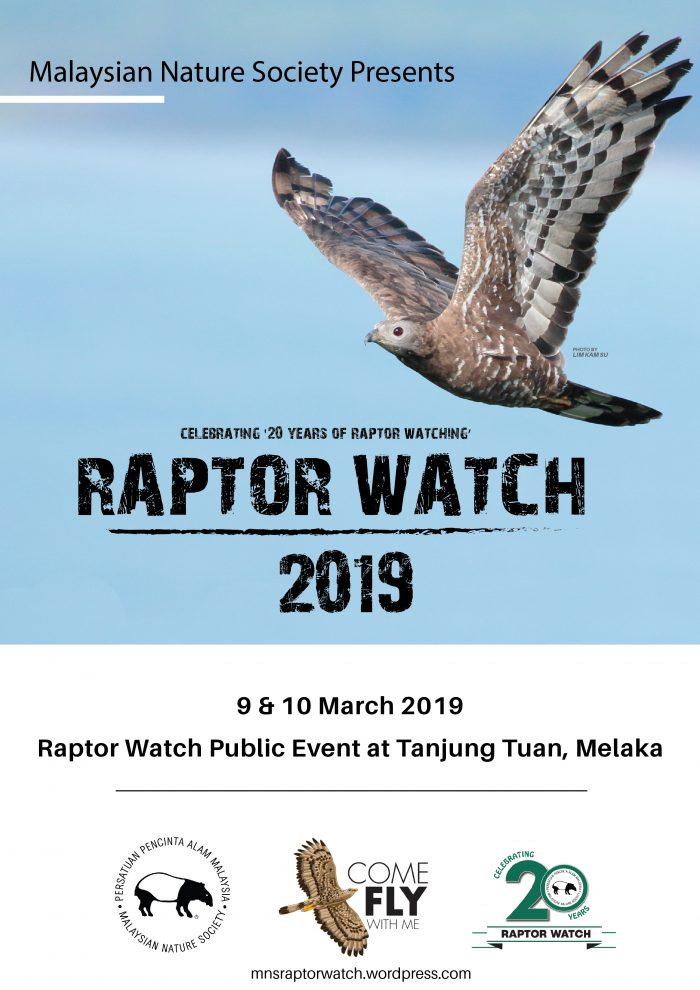 Raptor Watch 2019-01-01